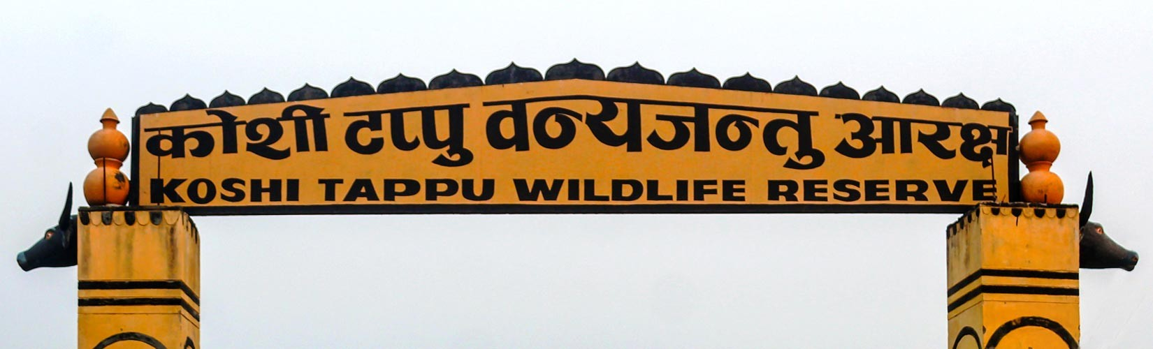 Koshi Tappu Wildlife Reserve Rules and Regulation