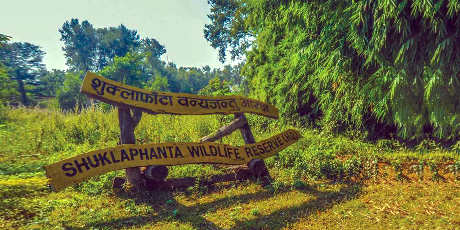 Shuklaphanta Wildlife Reserve Flora and Fauna<
